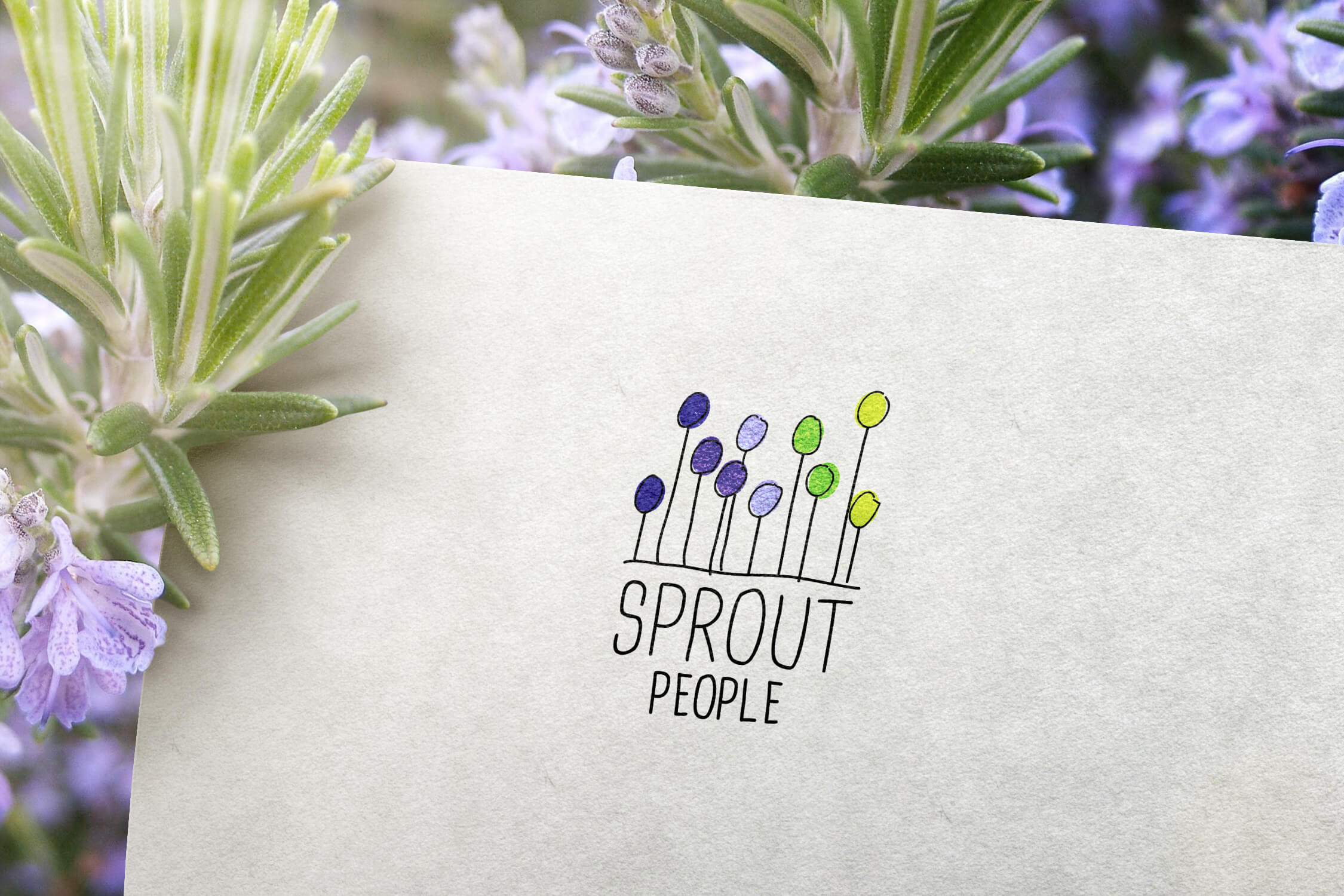 Close up of the Sprout People logo design on paper